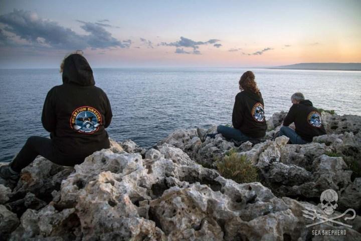 news-160615-1-2-160610-Sea-Shepherd-volunteers-MB-53-1000w