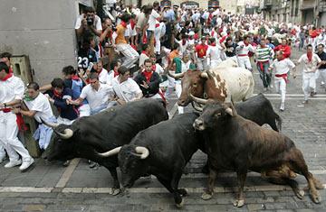 360_running_bulls_0706