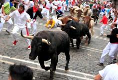 Fiesta De San Fermin Running Of The Bulls - Day 8