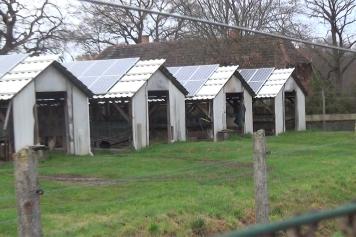 pelztierfarm-bei-magdeburg__1