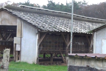 pelztierfarm-bei-magdeburg__5