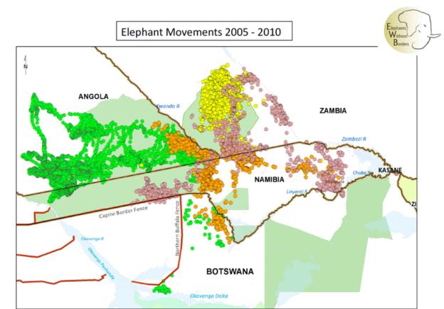 _90982093_elephantmovementsbotswana2005-10.png