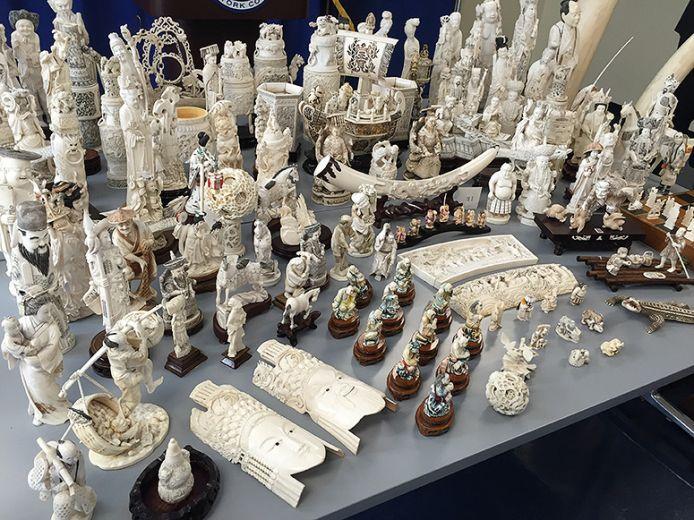 seized-ivory